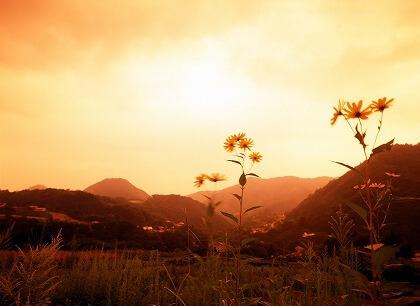 札幌整体治療院 谷井治療室 夕焼け画像