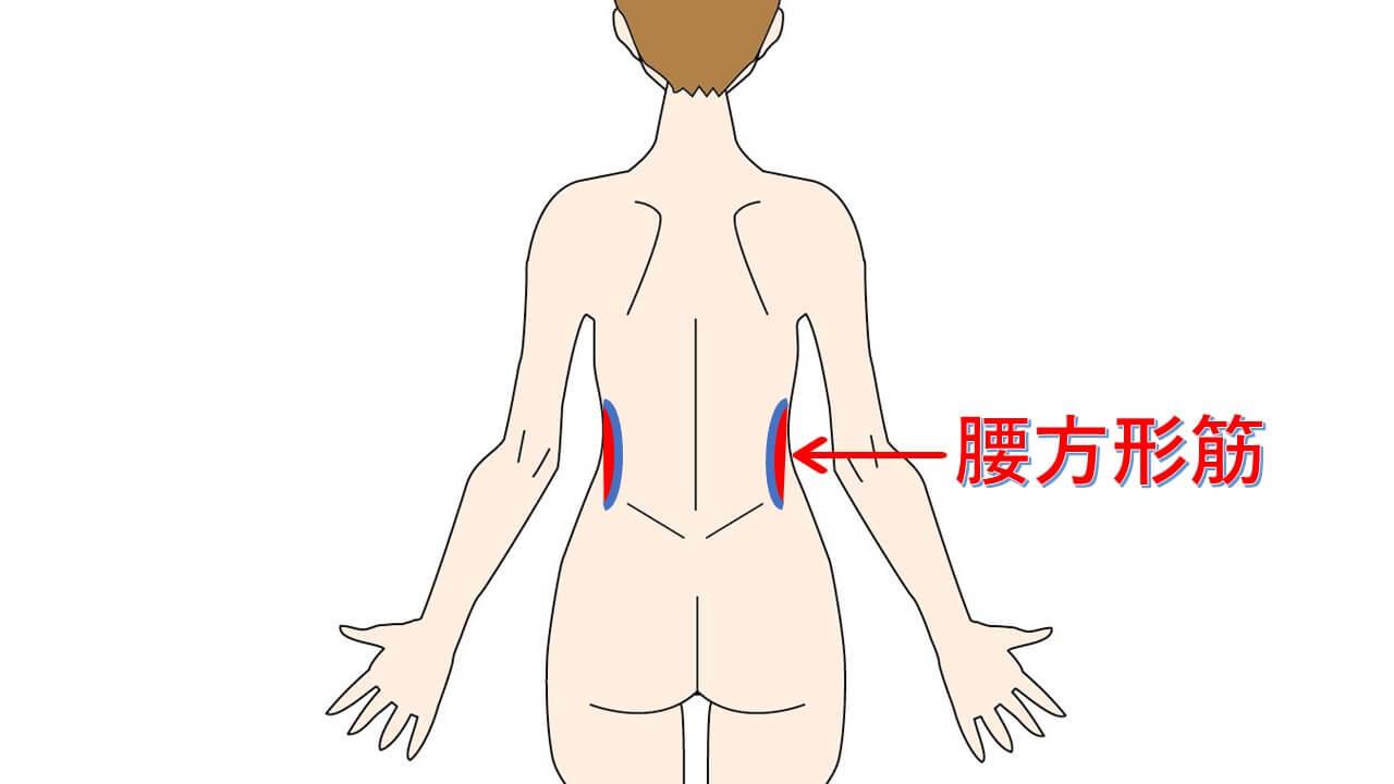 ぎっくり腰の治療ポイント腰方形筋